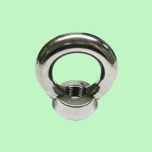 Alloy Steel HT 10.9 Eye Nut